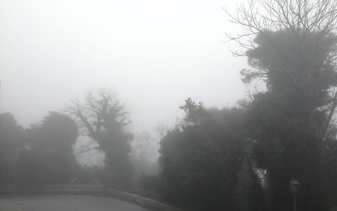 Das Nebelkind