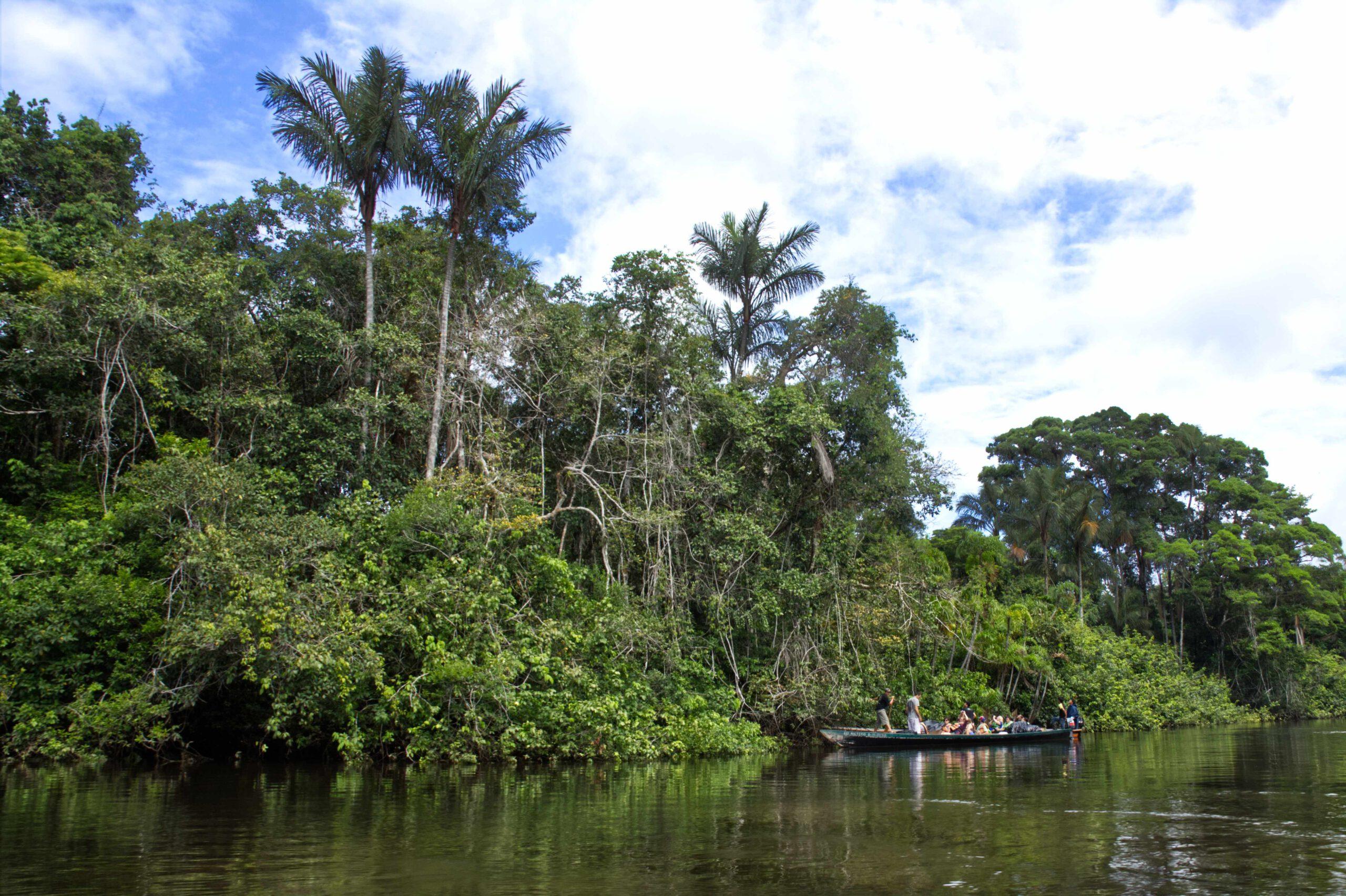 Lifestyle Ecuador: Mit dem Boot im Urwald von Ecuador, der Fluss heißt Cuyabeno