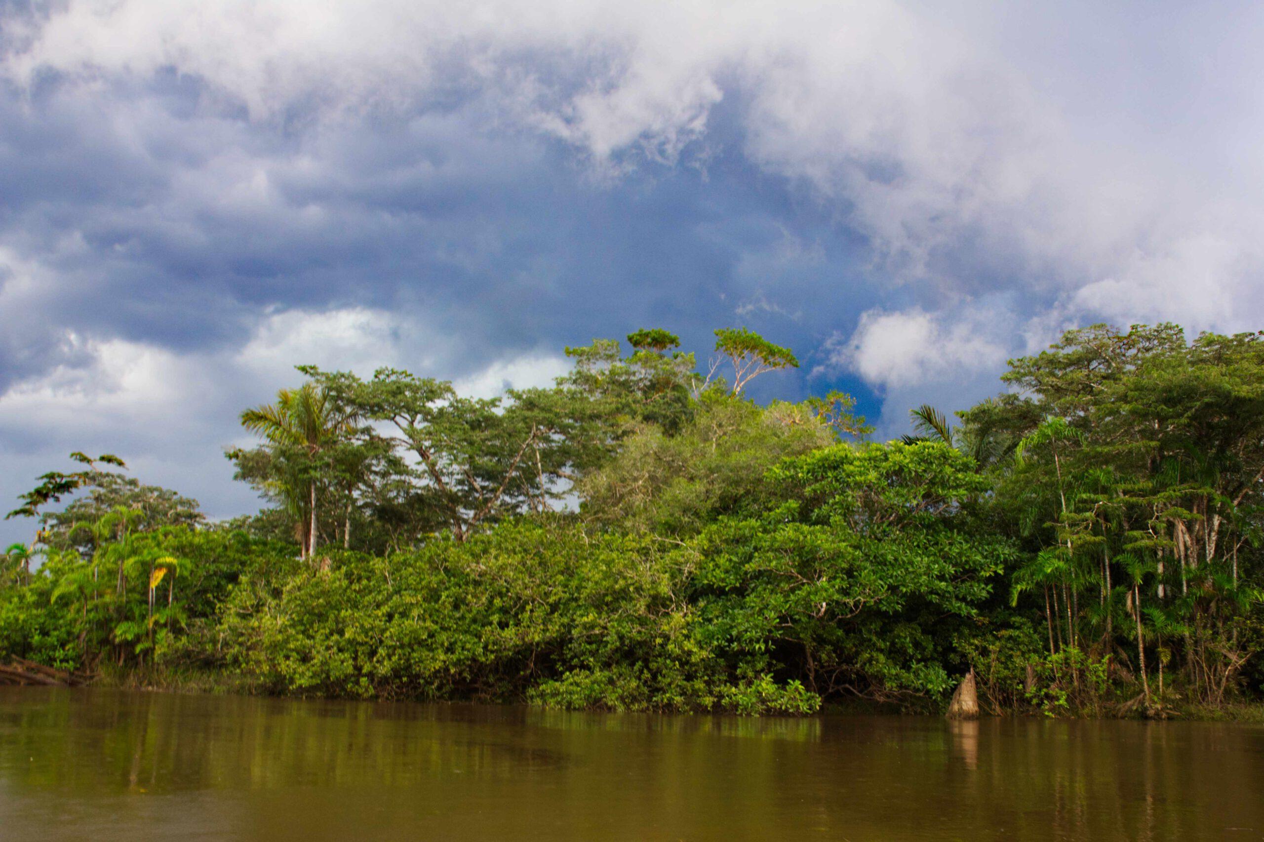 Gewitter Cuyabeno Ecuador